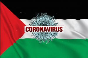 How Many COVID 19 Cases in State of Palestine
