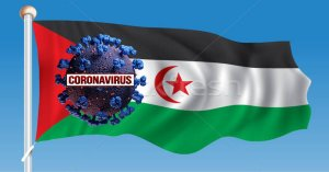 How Many COVID 19 Cases in Western Sahara